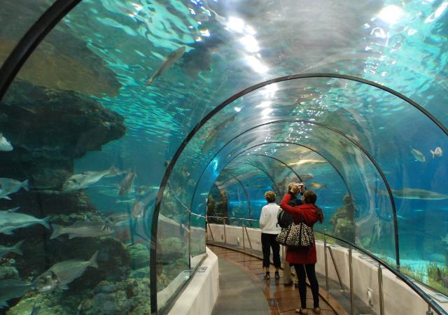 Entradas para el L'Aquàrium de Barcelona